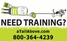 A Tail Above Dog Training Etc.