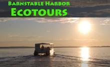 Barnstable Harbor ECOTOURS