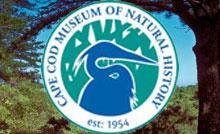 /images/advert/2458_3_cape cod museum ofnaturalhistory.jpg