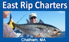 /images/advert/2460_3_eastripcharters.jpg