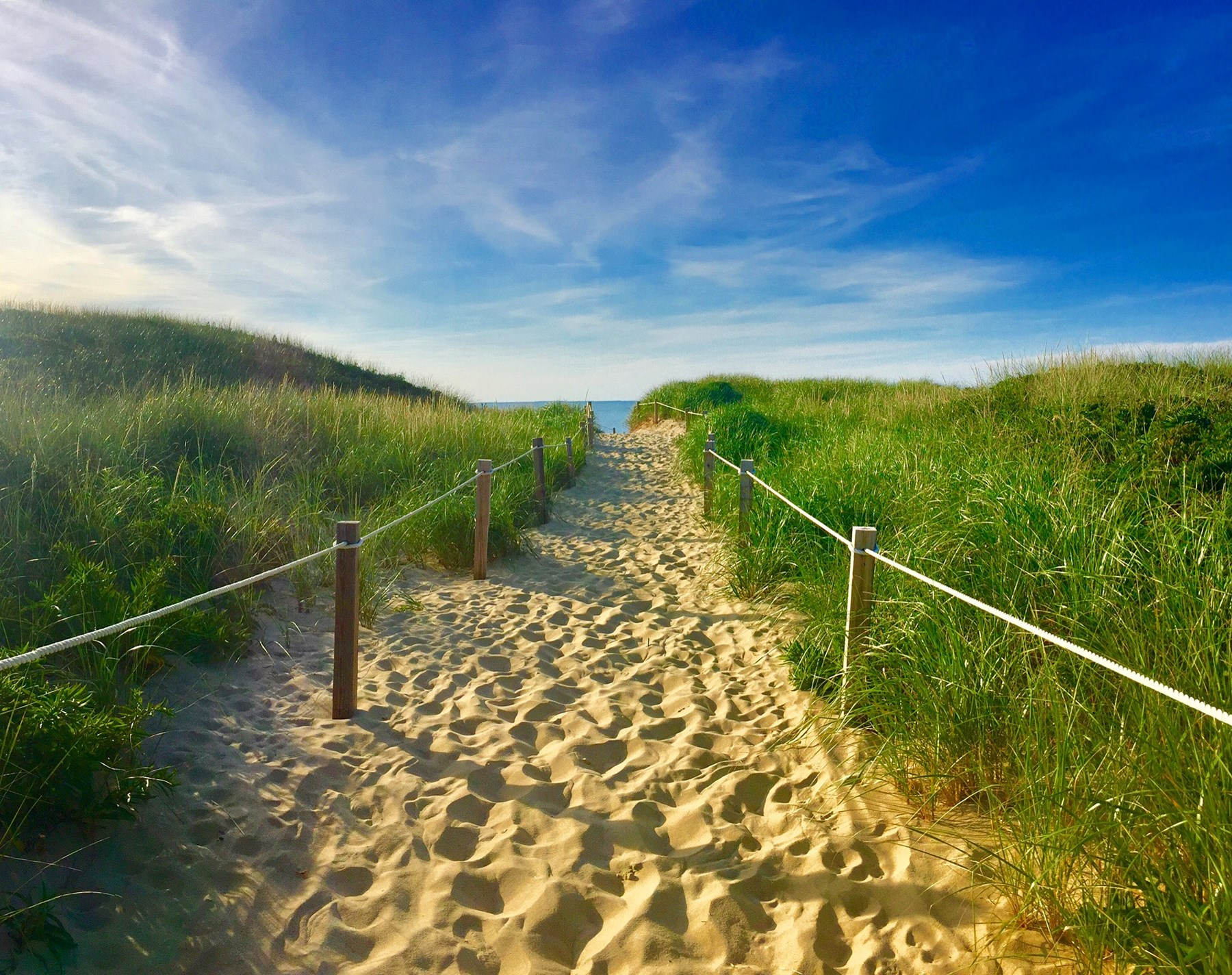 Here are some soothing Cape Cod and Islands videos, books and other content to hopefully provide you with a few moments of your happy place.