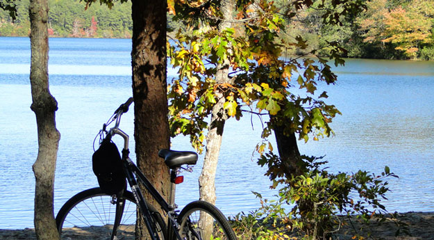 Biking to Cliff Pond at Nickerson State Park