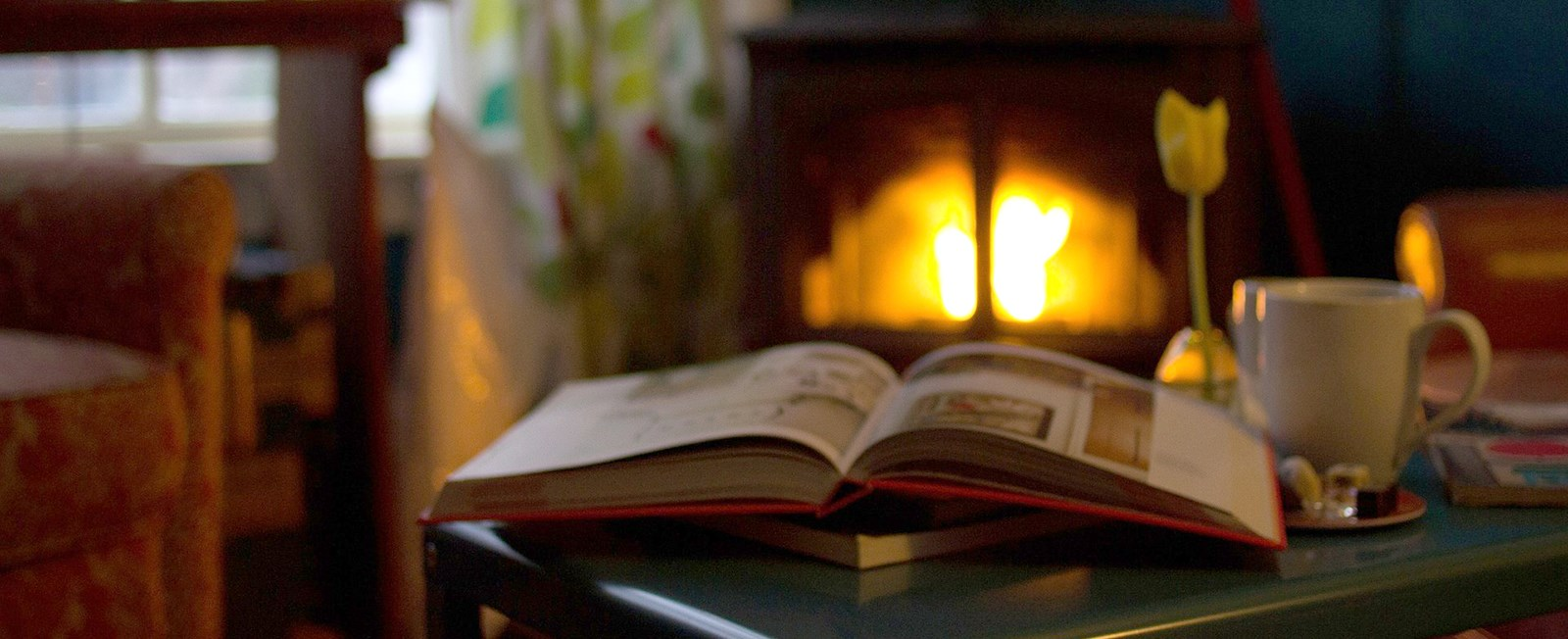 Whether it be a way to pass cold winter days or a companion on the beach—books are the way to go. We have many fantastic bookstores on the Cape & Islands that are worth a visit!