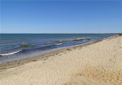 Ellis Landing Beach, Brewster
