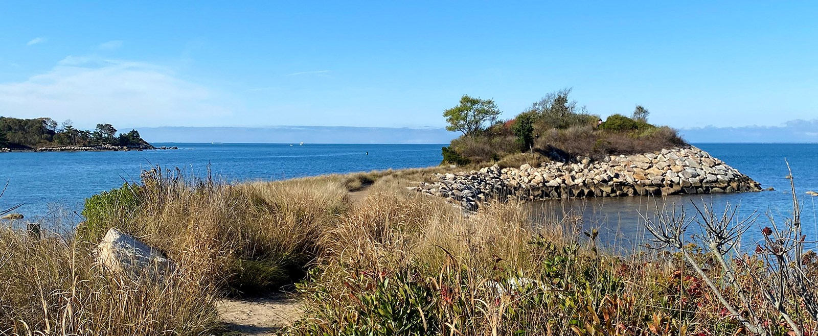 Cape Cod has some of the best hiking trails in Massachusetts! You'll find gorgeous scenery, wildlife, and beach trails galore!