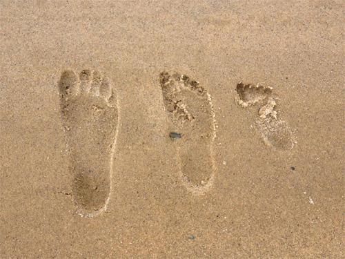 Footprints in the Sand, Cape Cod
