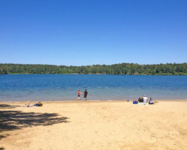 Flax Pond, Brewster