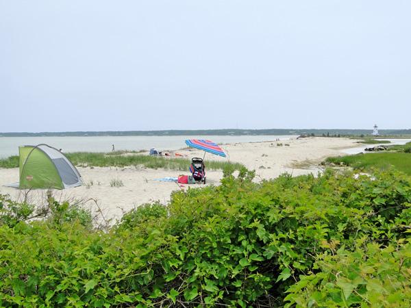Fuller Street Beach