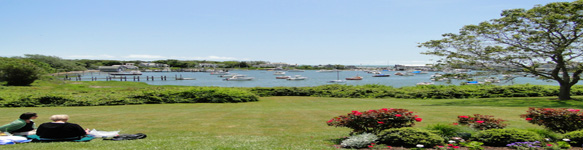 Harwich vacation rental guide