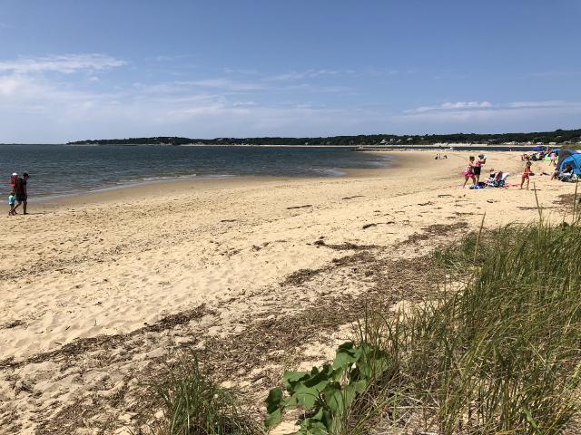 Indian Neck Beach