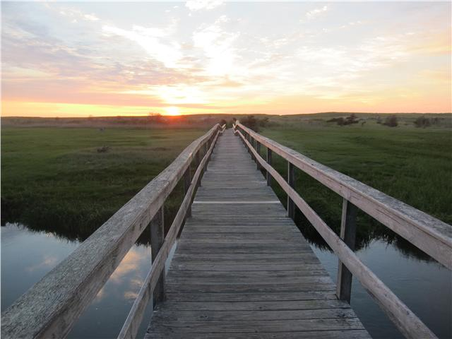 Pochet Bridge to Nauset Beach, Orleans, Cape Cod