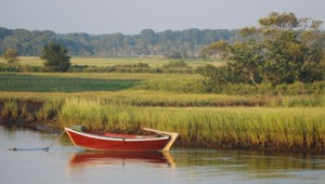 Along the Herring River, Harwich, Cape Cod