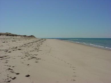 Ryder Beach, Truro
