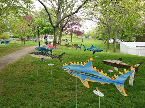 Sharks in the Park - Chatham, Cape Cod