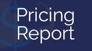 The 2014 Pricing Report is based on our 17-year history as the premier vacation rental website for the Cape and Islands. With more than 3,500 properties listed on our site, we are in a unique position to provide our clients and the industry with the most comprehensive analysis available of vacation rental home pricing on the Cape and Islands - and what drives it.