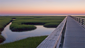 Looking to get an amazing picture on the Cape and Islands? Check out these ten photo worthy locations.