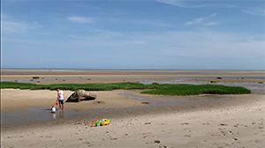 Come along as we explore tide pools in the Brewster Flats!