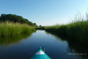 Kayaking through the salt marshes of Cape Cod