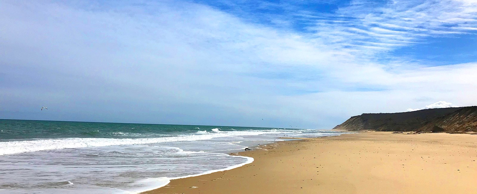 Don't miss these spots when you head to the Outer Cape!