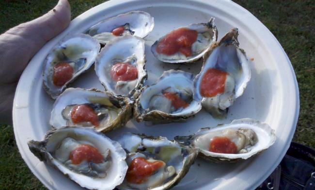 Enjoy Wellfleet Oysters at the Oysterfest
