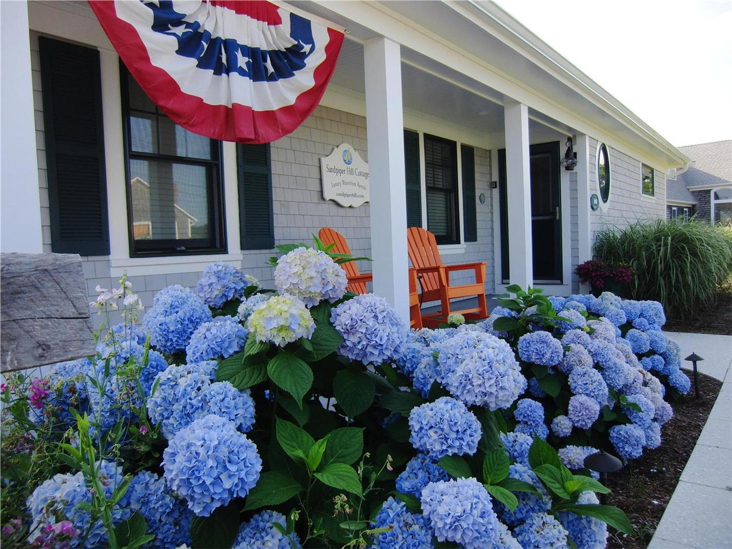 We've pulled 5 fast facts about one of the Cape and Islands' most beautiful residents, hydrangeas. Many of the vacation rentals on our site are decorated with the colorful flowers, which keep their vibrant color for much of the season.
