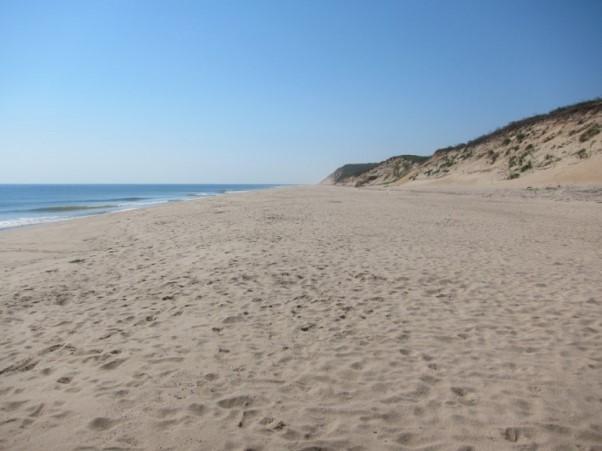 Coastal Erosion, Ballston Beach, Truro, Cape Cod   Coastal
