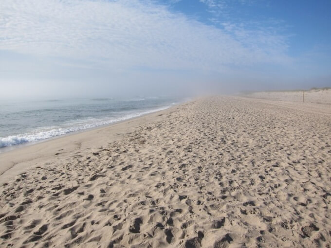Nauset Beach Orleans Cape Cod Weneedavacation Com