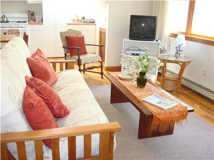 Vineyard Haven Martha's Vineyard vacation rental - Sitting area with double futon sofa & TV