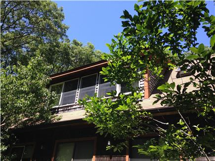 Vineyard Haven Martha's Vineyard vacation rental - House surrounded by trees, providing lots of privacy