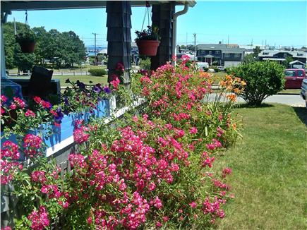 Oak Bluffs Martha's Vineyard vacation rental - View of the Sound, harbor, park and porch dining area