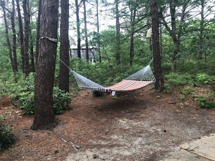 Edgartown Martha's Vineyard vacation rental - Comfortable hammock out back