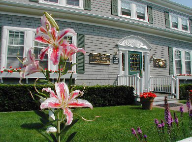 Oak Bluffs Martha's Vineyard vacation rental - The Main Entrance
