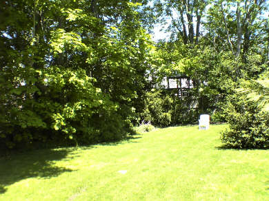 Vineyard Haven, Tisbury Martha's Vineyard vacation rental - Side Yard perfect for BBQ and pik nik and playing catch/ball