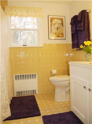 Vineyard Haven Martha's Vineyard vacation rental - Sunny bathroom with tub and shower