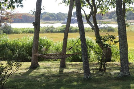 Edgartown Martha's Vineyard vacation rental - Relax in our hammock overlooking the water.
