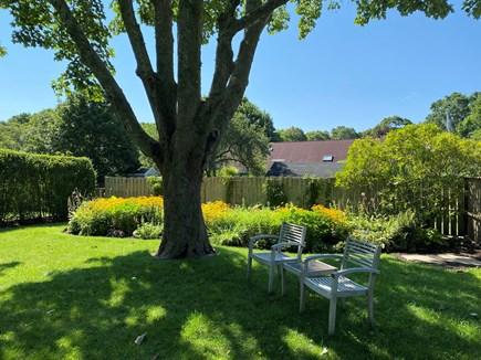 Oak Bluffs Martha's Vineyard vacation rental - Side yard