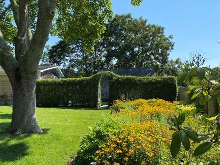 Oak Bluffs Martha's Vineyard vacation rental - Back garden in side yard
