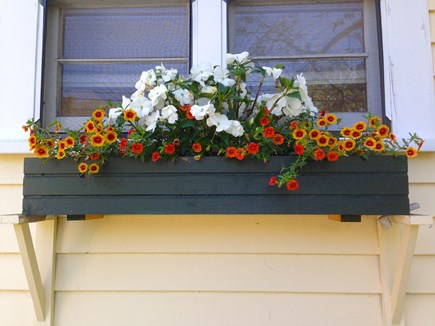 Vineyard Haven Martha's Vineyard vacation rental - Martha's Vineyard Rental Flower Boxes