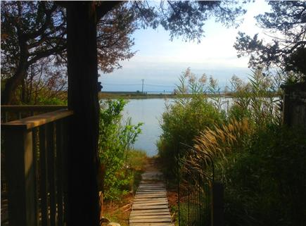 Oak Bluffs Martha's Vineyard vacation rental - Path to pond w/ small sitting area for quiet moments.