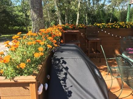 Oak Bluffs Martha's Vineyard vacation rental - Patio with grill