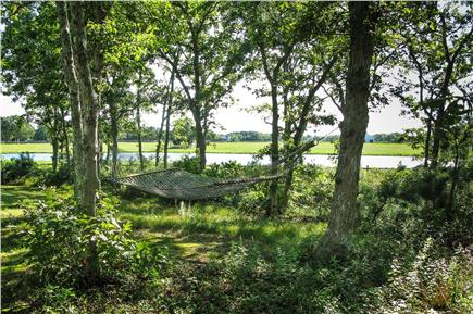 West Tisbury, Deep Bottom Pond Martha's Vineyard vacation rental - Backyard Hammock