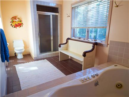 West Tisbury, Deep Bottom Pond Martha's Vineyard vacation rental - Master Bathroom