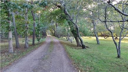 Edgartown Martha's Vineyard vacation rental - Picturesque Lenssen Way as you near the house