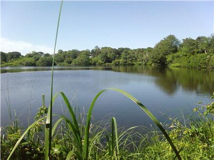 Edgartown Martha's Vineyard vacation rental - Walk through Sheriff's Meadow Reserve on the way to town