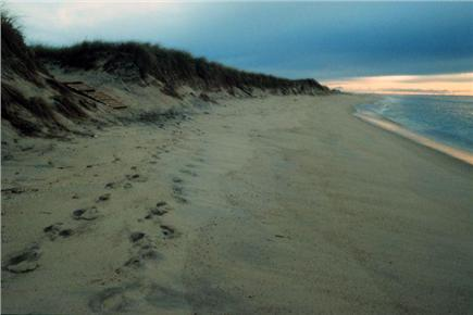 West Tisbury  near State Fores Martha's Vineyard vacation rental - Longpoint Ocean beach
