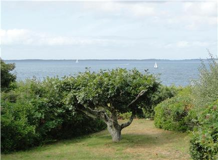 West Tisbury Martha's Vineyard vacation rental - Water view from the patio, walk 2 minutes to private beach