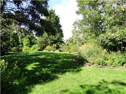 West Tisbury Martha's Vineyard vacation rental - Several acres of yard to play and explore