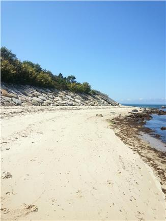 West Tisbury Martha's Vineyard vacation rental - Swim, relax, watch the boats