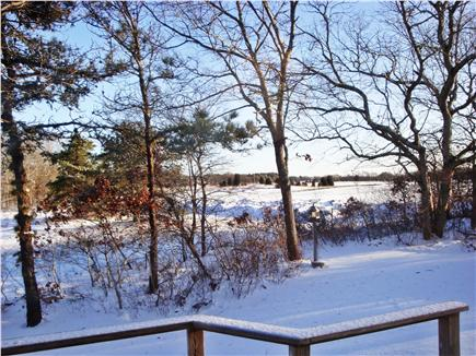 Edgartown Martha's Vineyard vacation rental - Winter back yard view