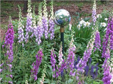 Oak Bluffs Martha's Vineyard vacation rental - Lovely gardens on property